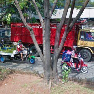 Kargo Jakarta – Palopo, Sulawesi Selatan